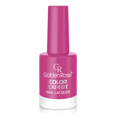 Golden Rose Лак для ногтей Color Expert № 17 фуксия